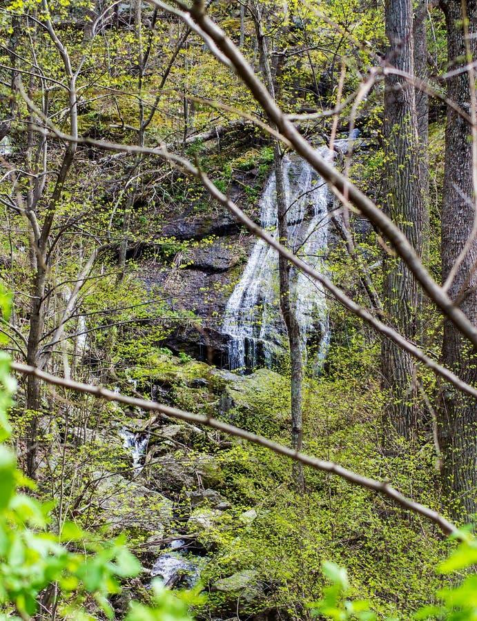Eine vertikale Ansicht eines Gebirgswasserfalls lizenzfreie stockbilder