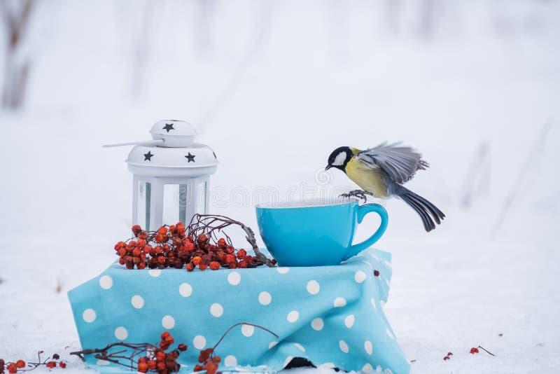 Eine Vogelmeise im Flug in einem Winterpark sitzt auf einer kleinen Umhüllungstabelle stockfoto