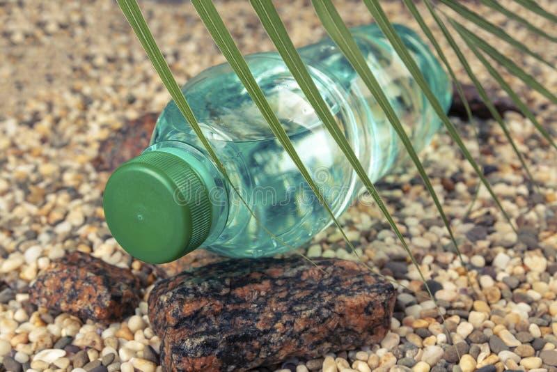Eine Wasserflasche liegt auf einem Steinstrand im Schatten eines Farns lizenzfreie stockfotografie