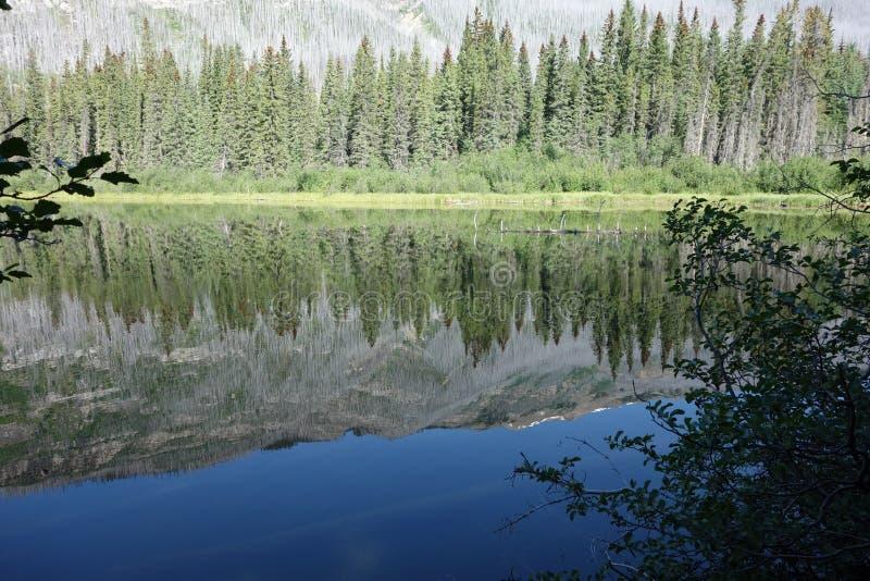 Eine widergespiegelte Seelandschaft in den felsigen Bergen lizenzfreies stockbild