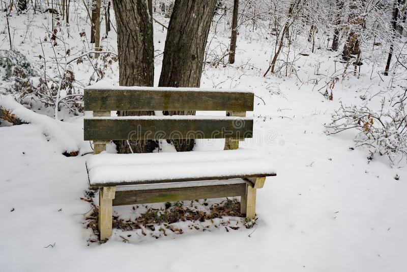 Eine Winter-Ansicht einer Bank im Wald lizenzfreie stockbilder