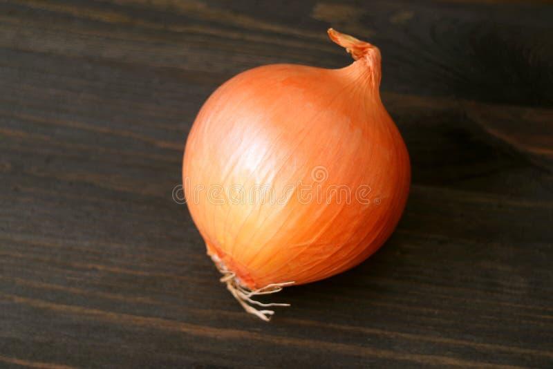 Eine Zwiebel lokalisiert auf dunkelbraunem Holztisch stockfotos