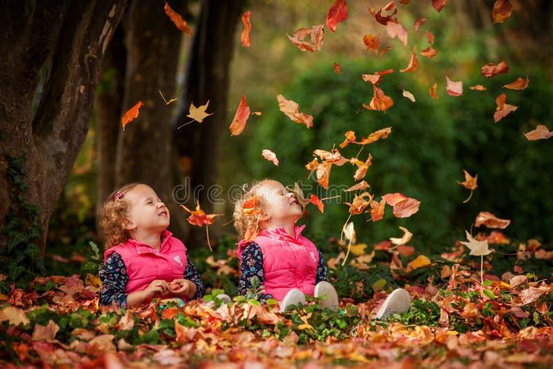 Eineiige Zwillinge, die Spaß mit Herbstlaub im Park, blonde nette gelockte Mädchen, glückliche Kinder, schöne Mädchen in den rosa stockfoto