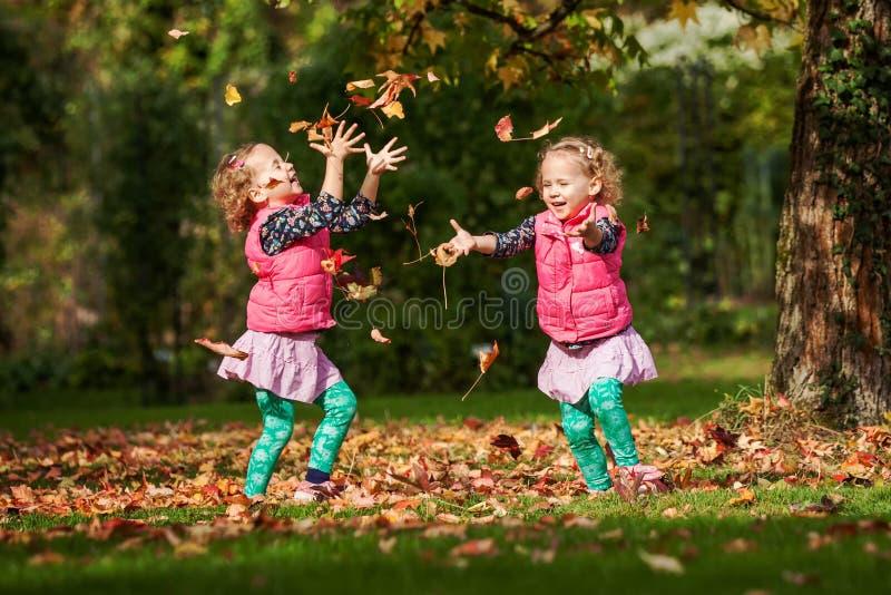 Eineiige Zwillinge, die Spaß mit Herbstlaub im Park, blonde nette gelockte Mädchen, glückliche Kinder, schöne Mädchen in den rosa lizenzfreies stockfoto