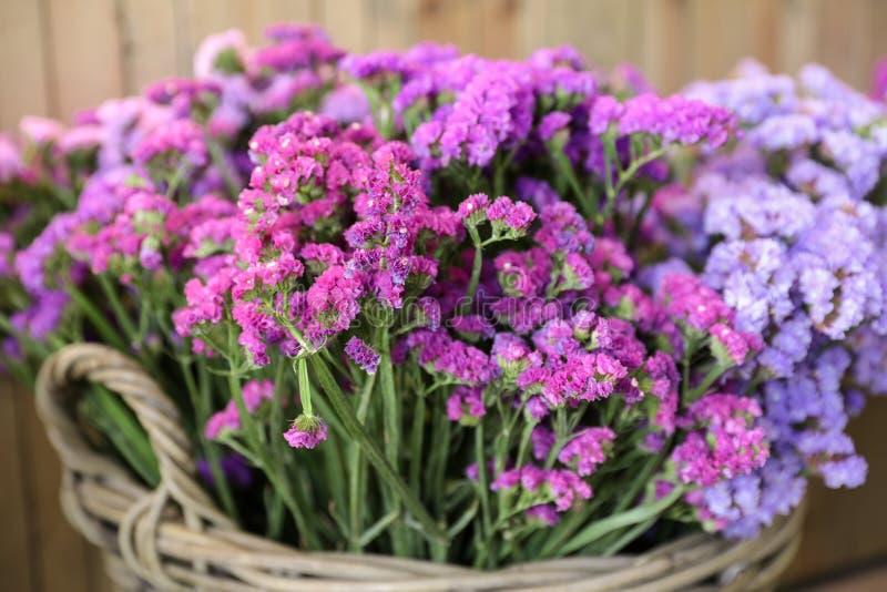 In einer Weidenkorbvielzahl von Limonium sinuatum oder statice Salem-Blumen in den rosa, lila, violetten Farben im Garten kaufen  lizenzfreies stockbild