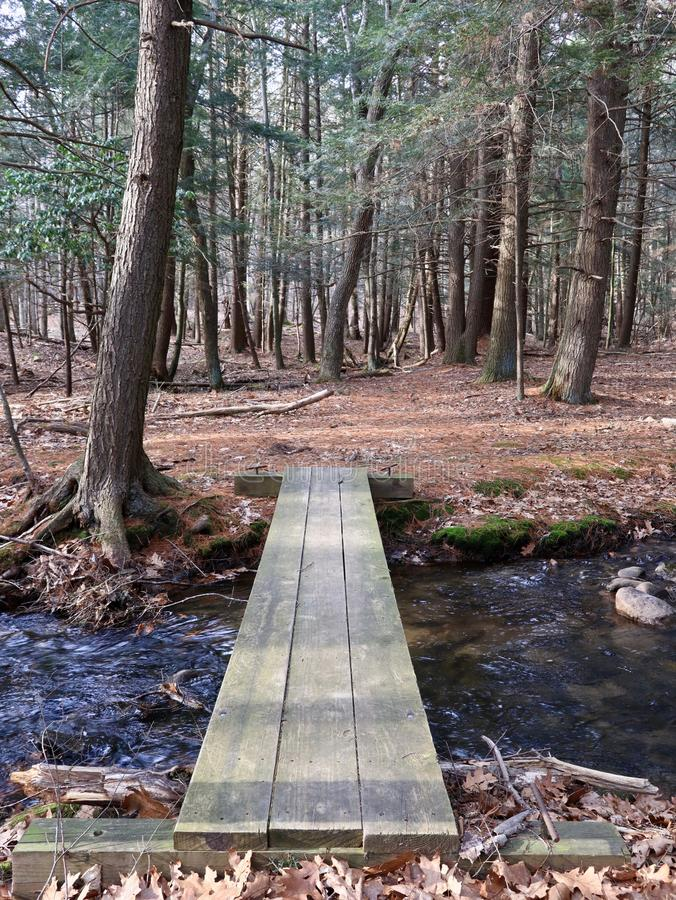 Einfache hölzerne Bohlenbrücke im Wald lizenzfreies stockbild