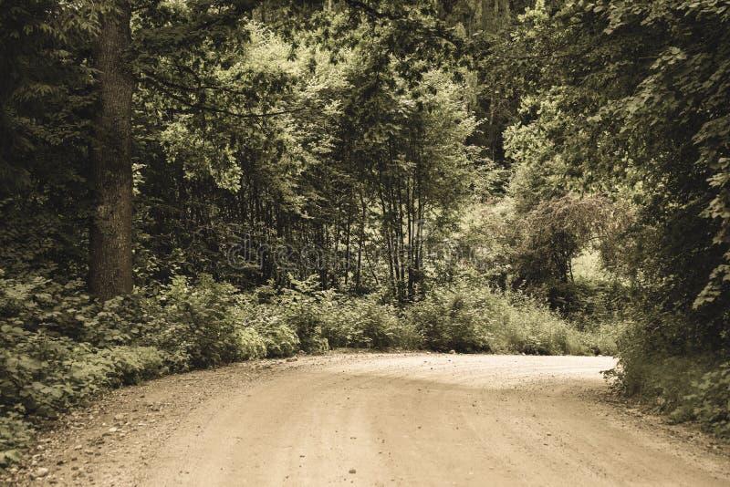 einfache Kieslandstraße im Sommer im Wald - Weinlese Retro- L lizenzfreies stockbild