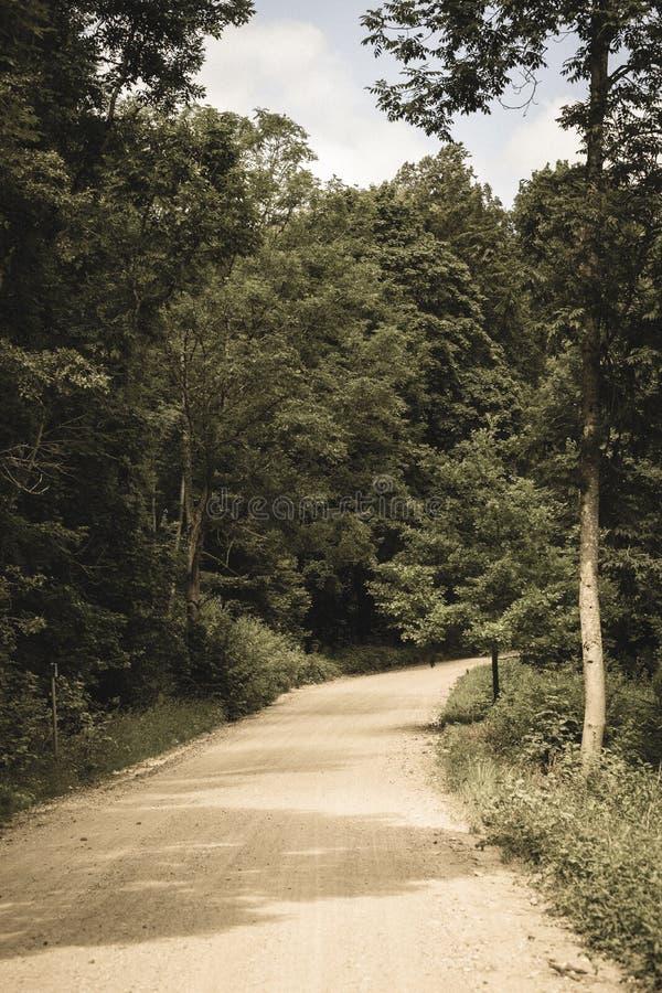 einfache Kieslandstraße im Sommer im Wald - Weinlese Retro- L stockfotografie