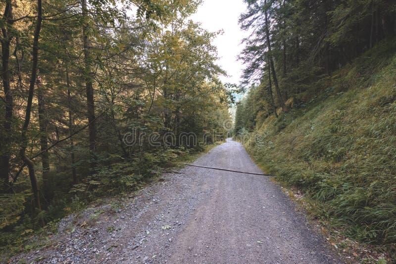 einfache Kieslandstraße im Sommer im Wald - Weinlese Retro- L lizenzfreie stockfotografie