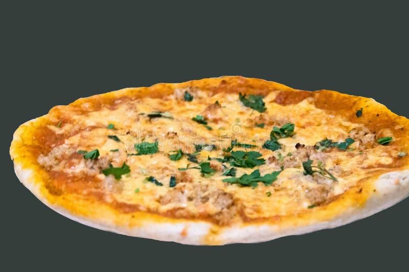 Einfache selbst gemachte Pizza im Ofen lizenzfreie stockfotos