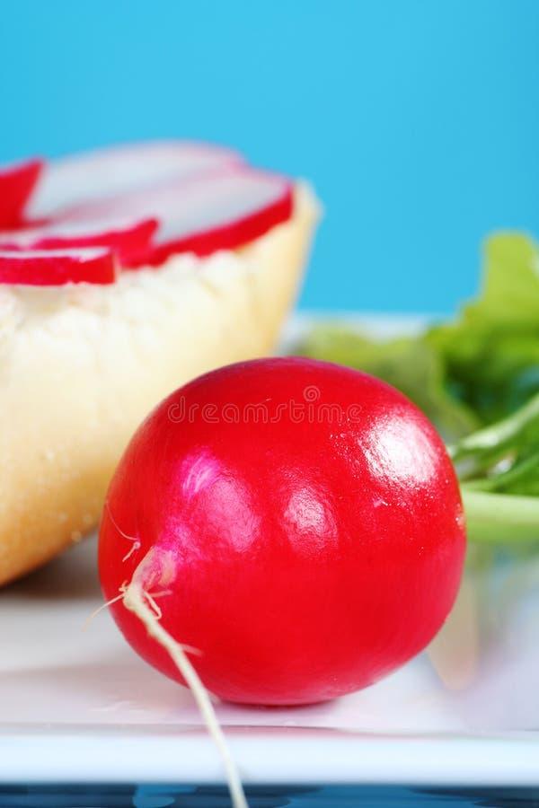 Einfaches und gesundes Sandwich mit frischem Rettich lizenzfreie stockbilder