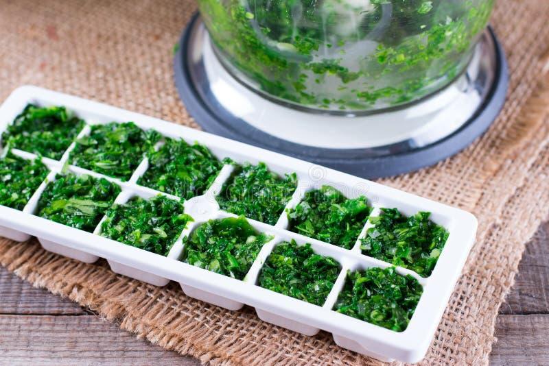 Einfrierende Grüns in der Eiswürfelform lizenzfreies stockbild