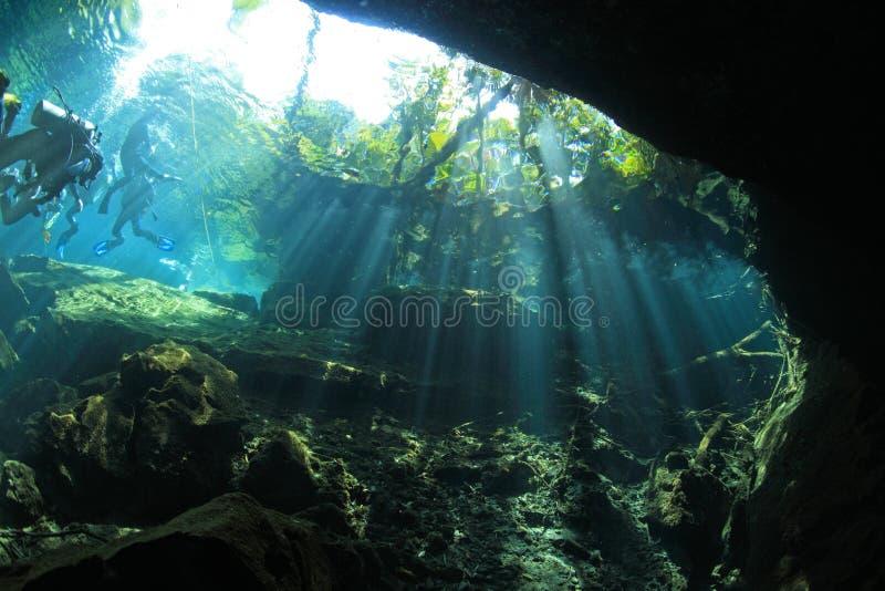 Eingang cenote Höhle lizenzfreie stockfotos