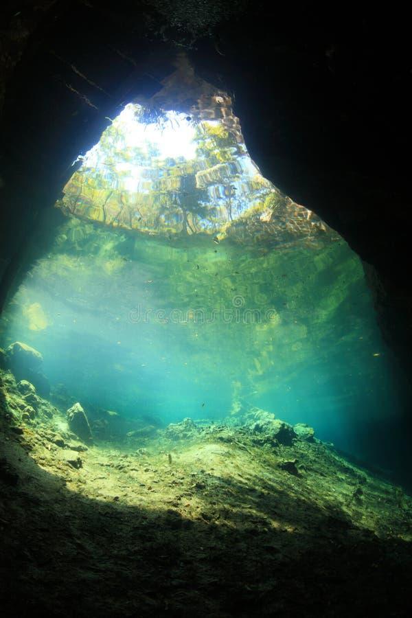 Eingangsbereich von cenote Unterwasserhöhle stockfotos