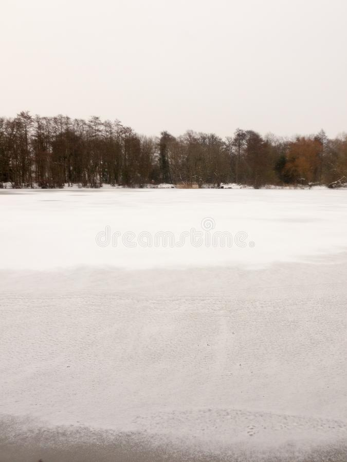 Eingefroren über des Oberflächenwassers des Sees des weißen bloßen Bäumen Schnee-Winters stockfotos