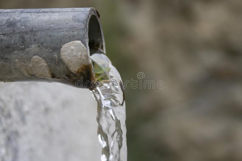 Eingelassen dem Holz Nat?rliches Quellenwasser Durchfließen des Rohres stockfoto
