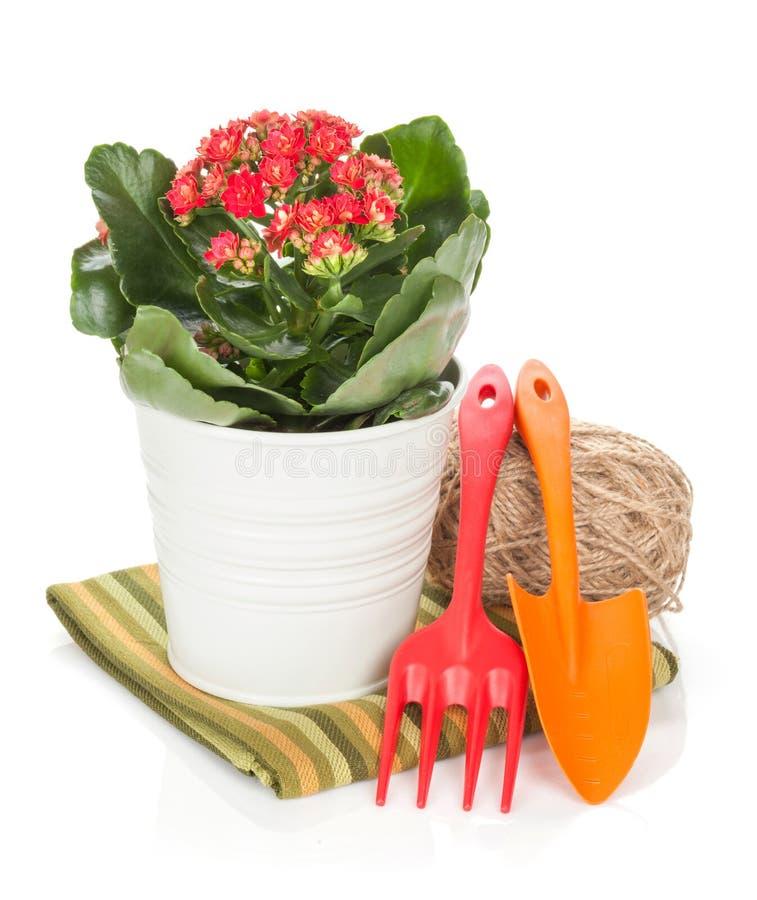Eingemachte Blume und Gartenwerkzeuge lizenzfreies stockbild