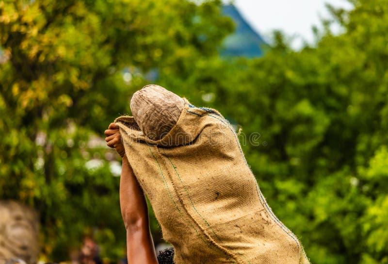 Eingesackter Bereich der Kokosnuss stockbild