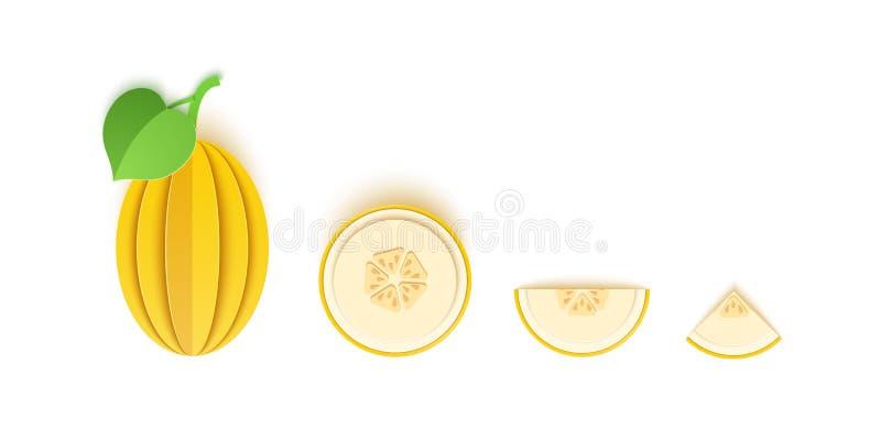 Eingestellt von der Melonenbeere schnitt Papierzitrusfrucht schnitt die ganzen, dreieckigen und runden Scheiben, Entwurf zu jedem vektor abbildung
