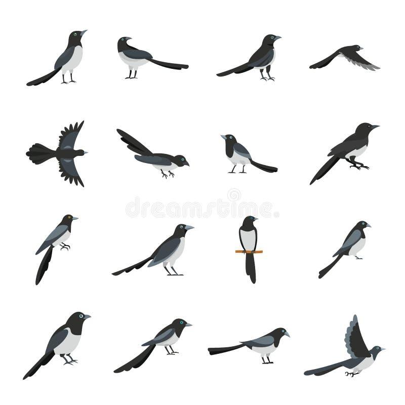 Eingestellte flache Art des Elsterkrähen-Vogels Ikonen vektor abbildung