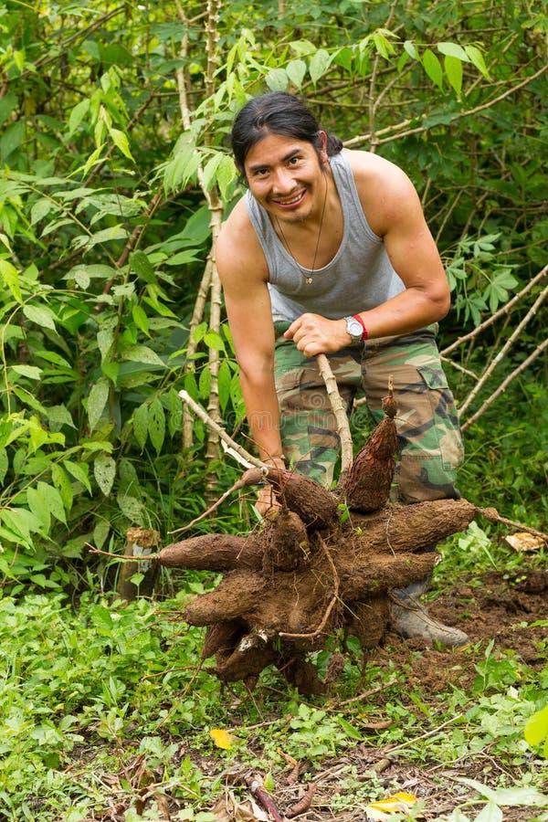 Einheimischer Mann mit Manioka-Wurzeln stockbild