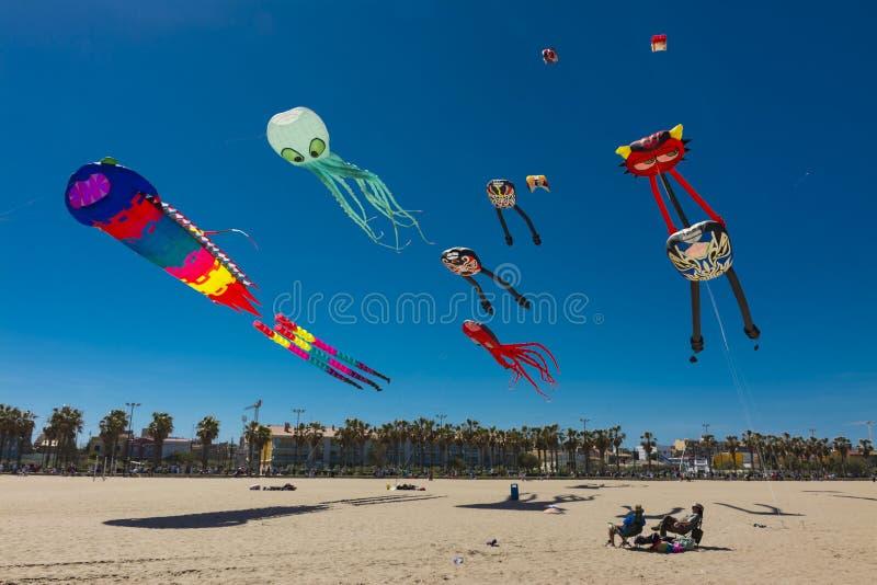 Einige bunte Drachen, die auf den Strand fliegen stockbilder