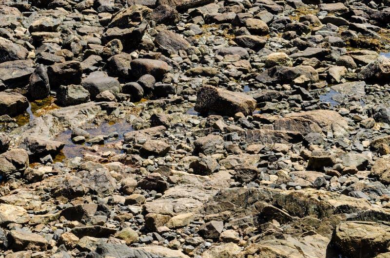 Einige Felsen mit Wasser stockfotografie