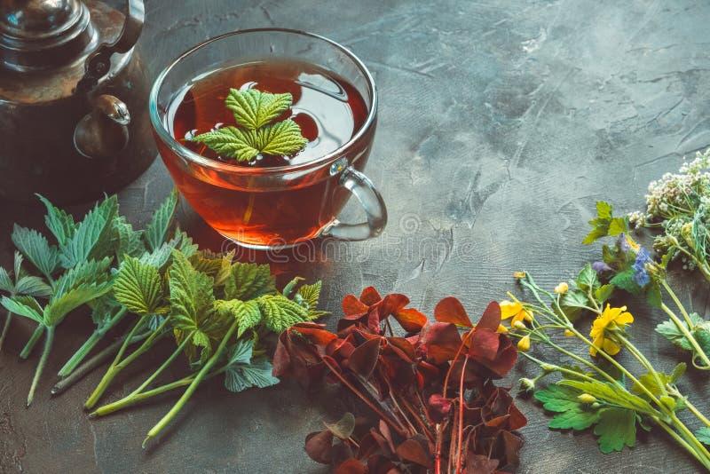 Einige Heilpflanzen und Kräuter, gesunde Kräuterteeschale und Weinlesekupferteekessel Hypericum perforatum ist gerade, wie wirkun stockfoto