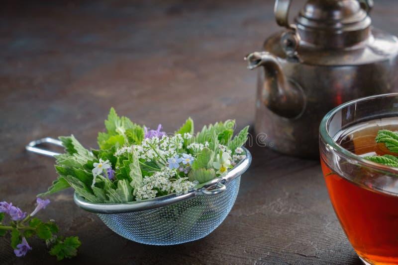 Einige Heilpflanzen und Kr?uter in Tee infuser, in der gesunden Kr?uterteeschale und im Weinlesekupferteekessel Hypericum perfora lizenzfreie stockfotografie