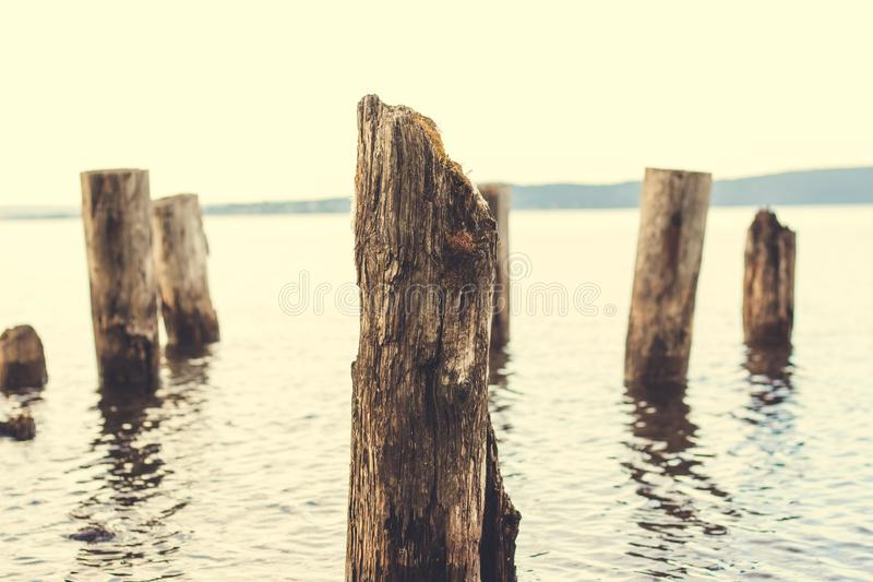 Einige Säulen des Baums, der als Unterstützungen für den Pier diente stockfoto