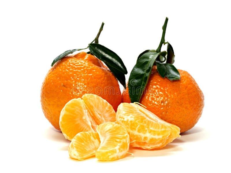 0622 einige Tangerinen mit Stämmen und Blätter eins offen mit aufgeteilter einzelner Frucht stockfotografie