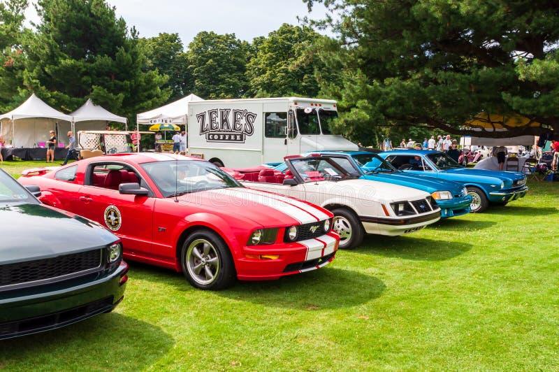 Einiges Ford Mustangs von verschiedenen Jahren stockfotos