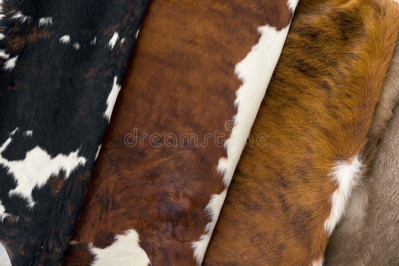 Einiges unterschiedliche Kuhhaut, Musterbeschaffenheit stockfoto