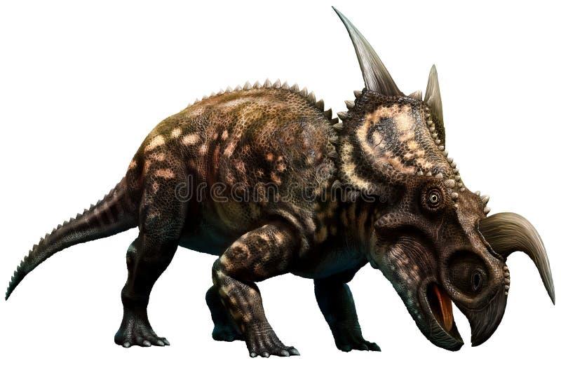 Einiosaurus illustration stock