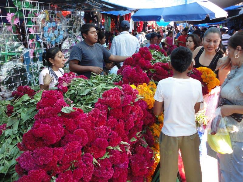Einkauf für Blumen lizenzfreie stockfotos