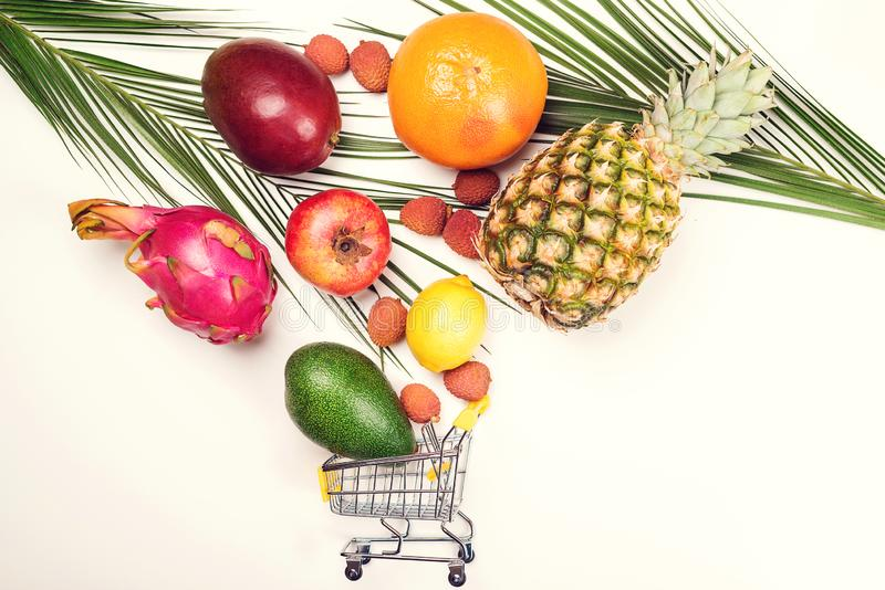 Einkaufswagen voll der tropischen Frucht, Raum für Text, Fahne Konzept des Gesundheitsbiobiologischen lebensmittels Kreative flac lizenzfreie stockfotografie