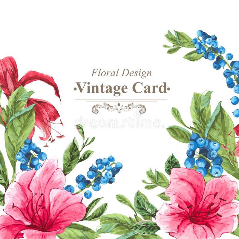 Einladungs-Weinlese-Karte mit den Blaubeeren, rosa lizenzfreie abbildung