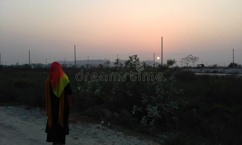 Einsam am Sonnenuntergang stockbild