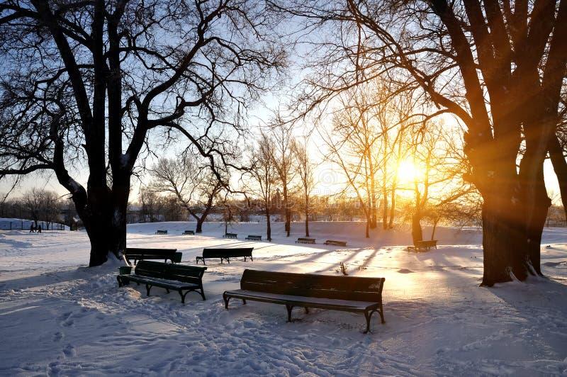 Einsame Bänke abgedeckt im tiefen Schnee stockfotografie