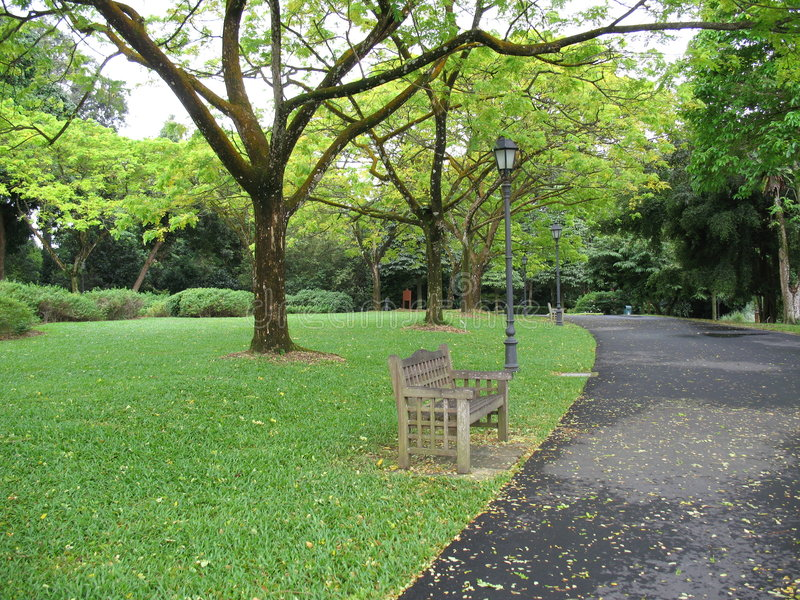 Einsame Bank im Park stockfotos