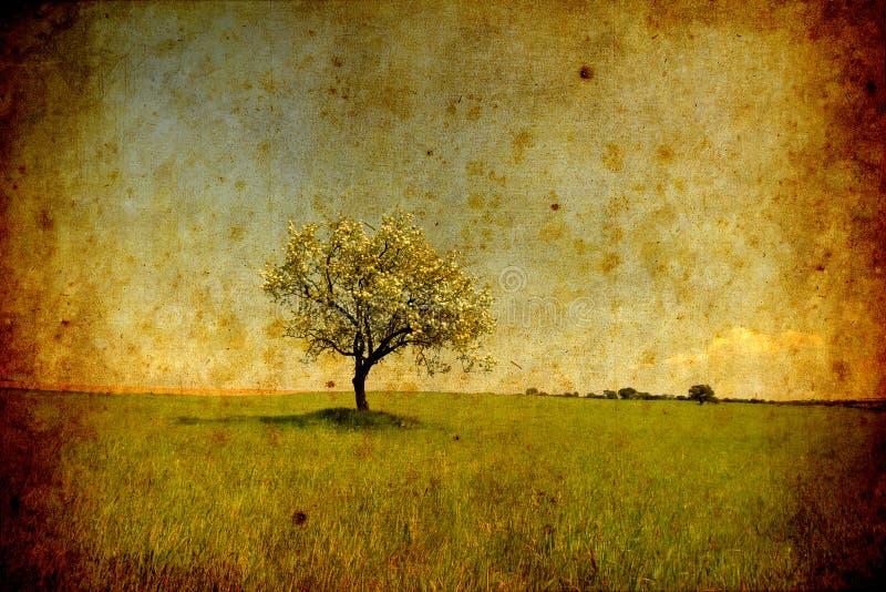 Einsame Baum grunge Beschaffenheit stock abbildung