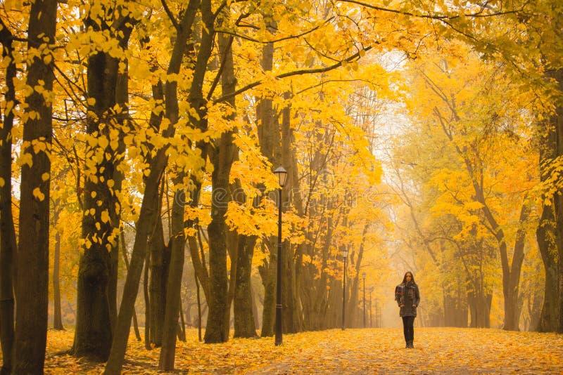 Einsame Frau, die in Park an einem nebeligen Herbsttag geht Einsame Frau, die Naturlandschaft im Herbst genießt stockbilder