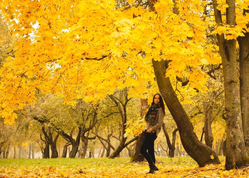 Einsame Frau, die Rest unter dem gelben Baum in einem nebeligen Herbsttag hat stockfotografie