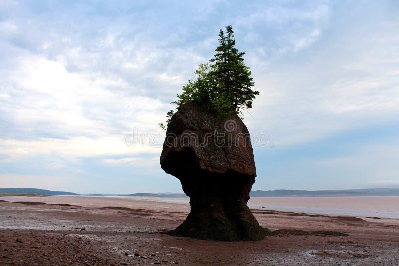 Einsame Insel lizenzfreies stockfoto
