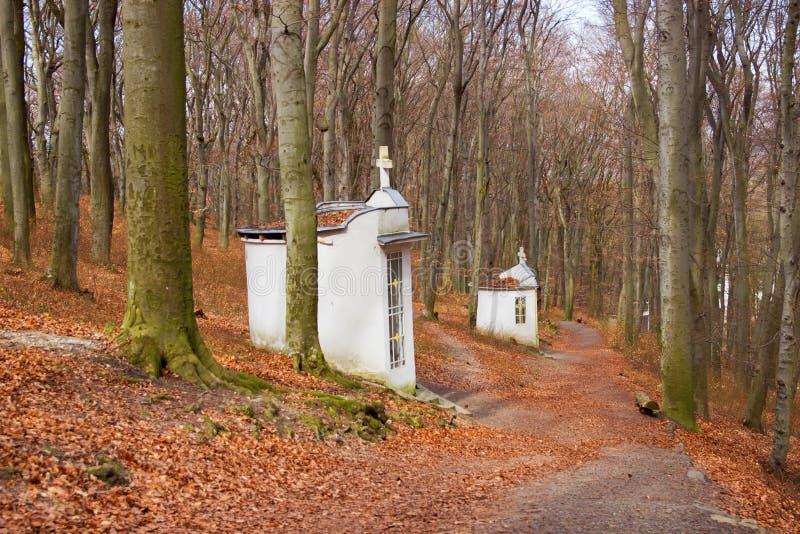 Einsame Kapellen im Wald lizenzfreies stockfoto