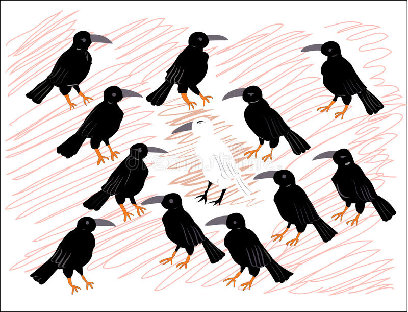 Einsame weiße Krähe unter schwarzen Raben stockbild
