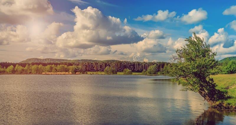 Einsamer Baum und See während des Ereignisses Reflexion in der schönen Naturlandschaft des Wassers stockfoto