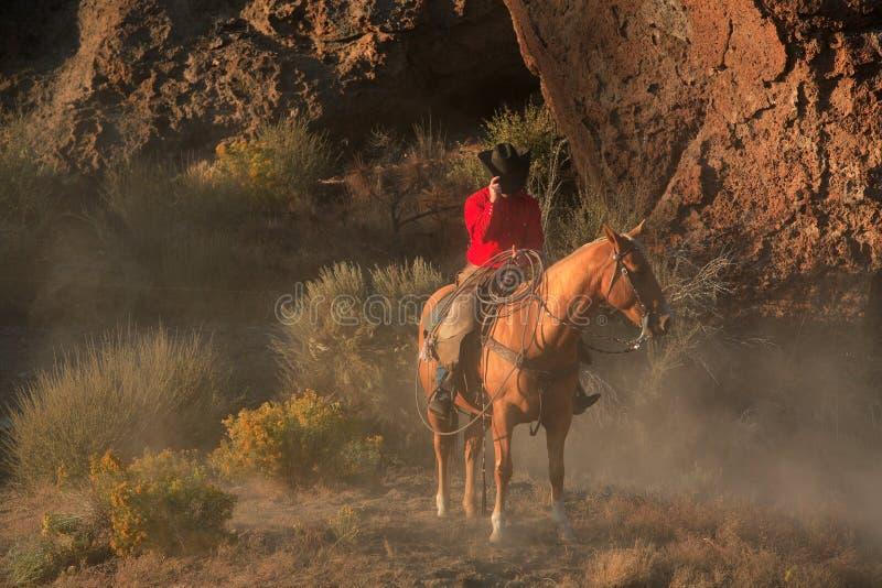 Einsamer Cowboy II lizenzfreie stockfotografie