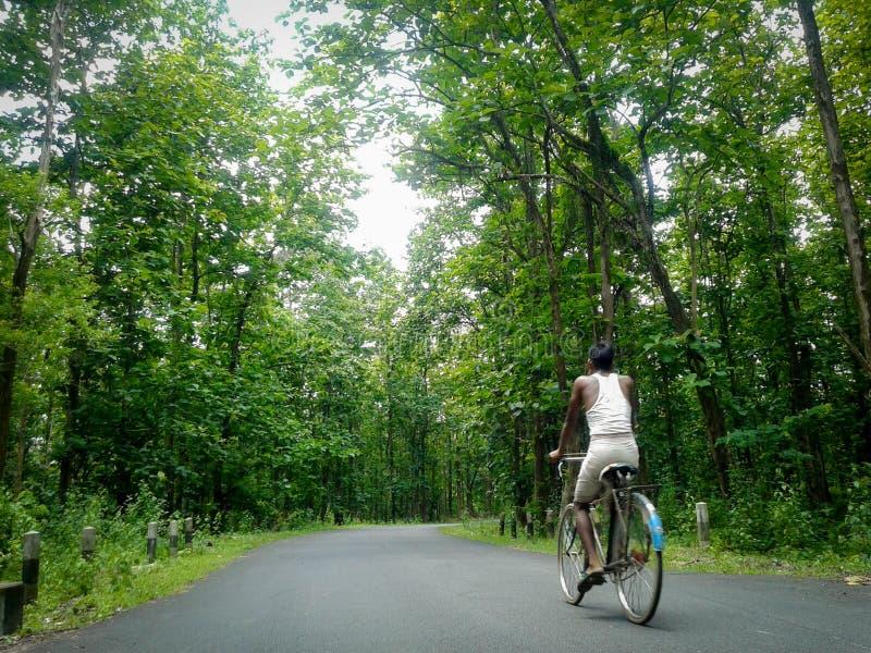 Einsamer ländlicher Mann, der in einen Wald, ländlicher Assamesemann cyling ist in einer freien Straße in Rani Forest, Assam radf lizenzfreie stockbilder