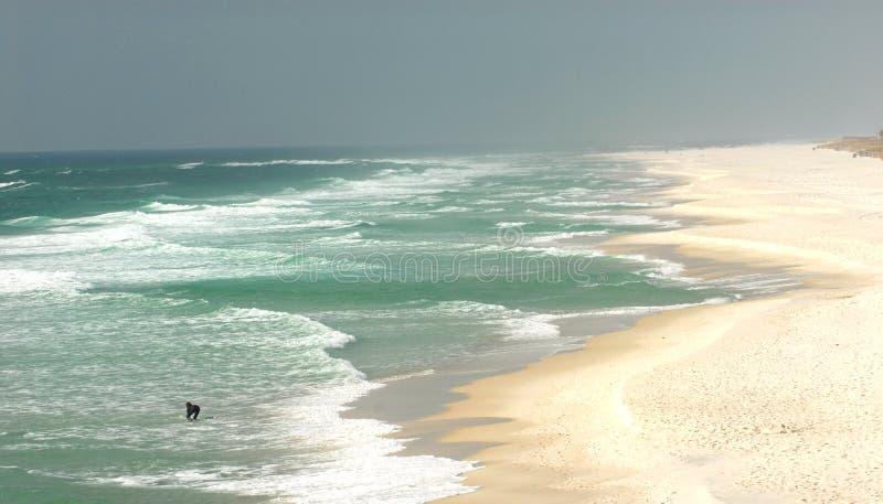 Einsamer Surfer auf einem Strand in Pensacola, Florida stockfotografie